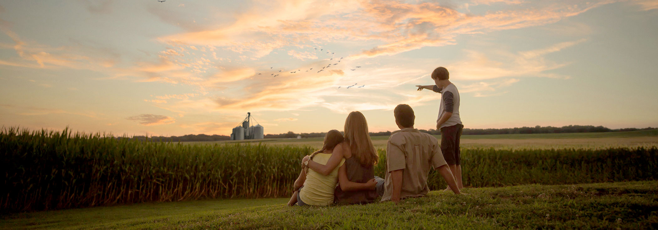family sits on a grassy area watching the sunset